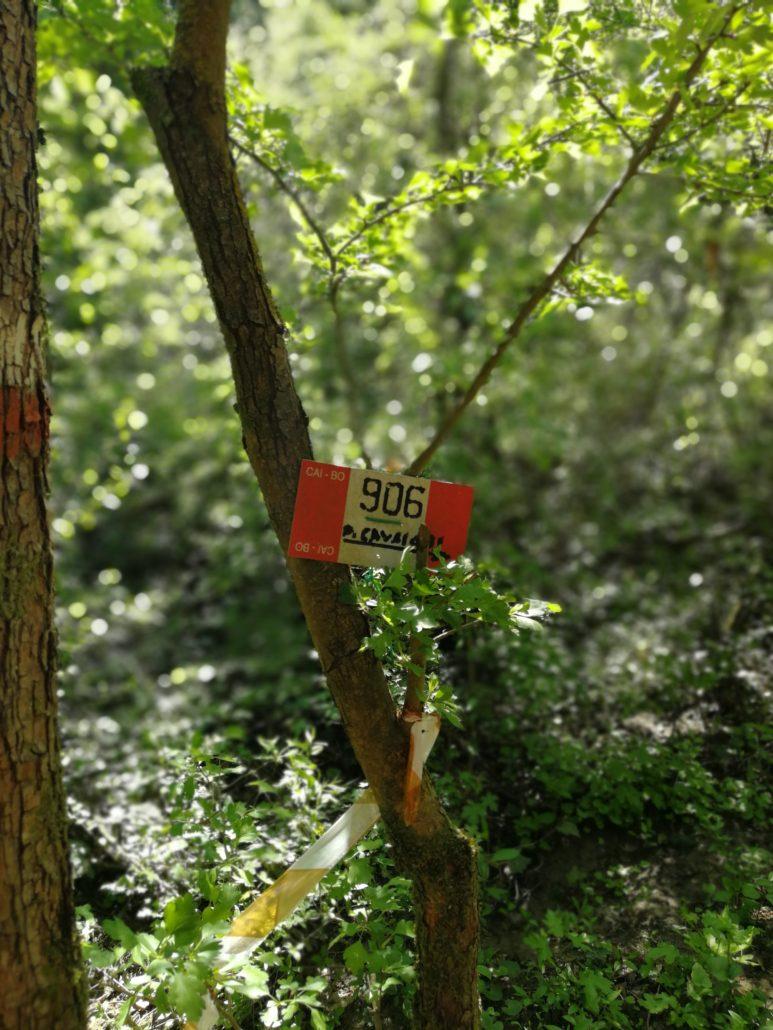 sentiero cai 906 per parco cavaioni