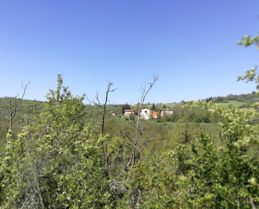 case sul sentiero