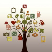albero social media