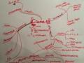 CCome - mappa riassuntiva di Francesca Sanzo